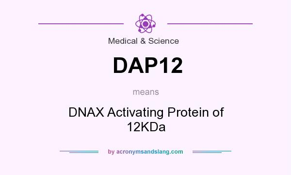 What does DAP12 mean? It stands for DNAX Activating Protein of 12KDa