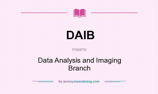 What does DAIB mean? It stands for Data Analysis and Imaging Branch