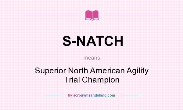 What does S-NATCH mean? It stands for Superior North American Agility Trial Champion