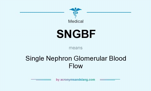 What does SNGBF mean? It stands for Single Nephron Glomerular Blood Flow
