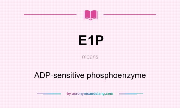 What does E1P mean? It stands for ADP-sensitive phosphoenzyme