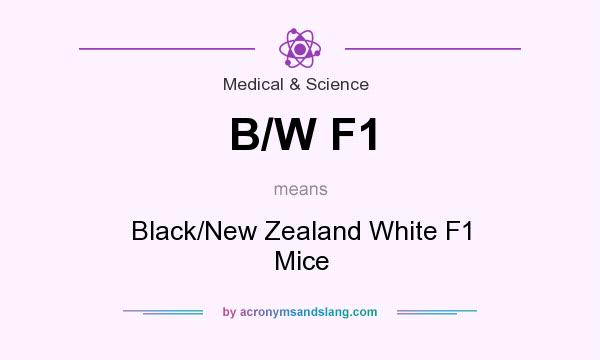 What does B/W F1 mean? It stands for Black/New Zealand White F1 Mice