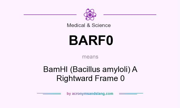 What does BARF0 mean? It stands for BamHI (Bacillus amyloli) A Rightward Frame 0