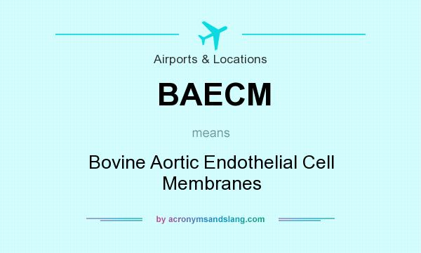 What does BAECM mean? It stands for Bovine Aortic Endothelial Cell Membranes