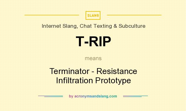 What does T-RIP mean? It stands for Terminator - Resistance Infiltration Prototype