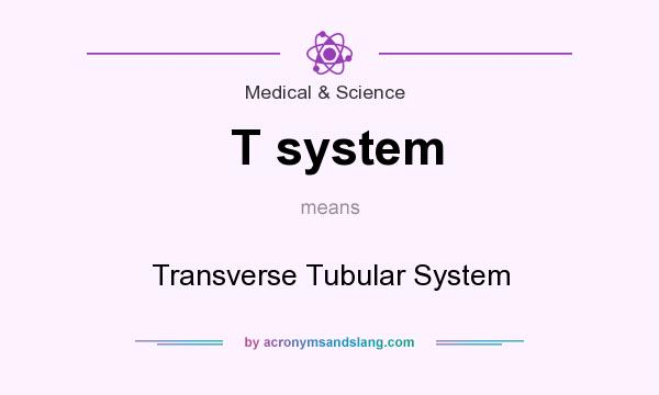 What does T system mean? It stands for Transverse Tubular System