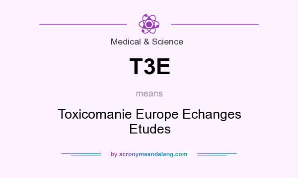 What does T3E mean? It stands for Toxicomanie Europe Echanges Etudes