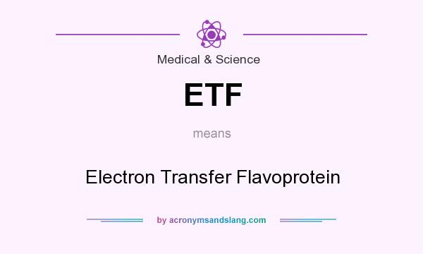 What does ETF mean? It stands for Electron Transfer Flavoprotein