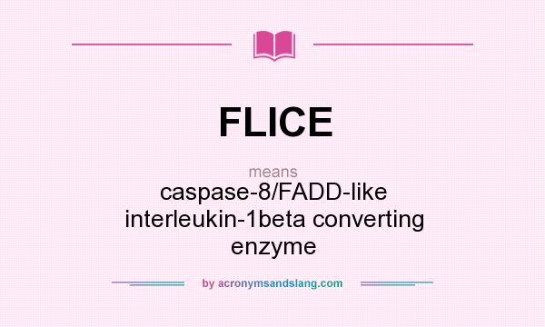 What does FLICE mean? It stands for caspase-8/FADD-like interleukin-1beta converting enzyme