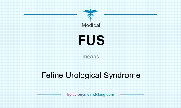 What does FUS mean? It stands for Feline Urological Syndrome
