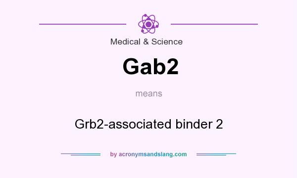 What does Gab2 mean? It stands for Grb2-associated binder 2