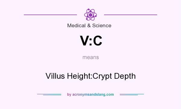 What does V:C mean? It stands for Villus Height:Crypt Depth