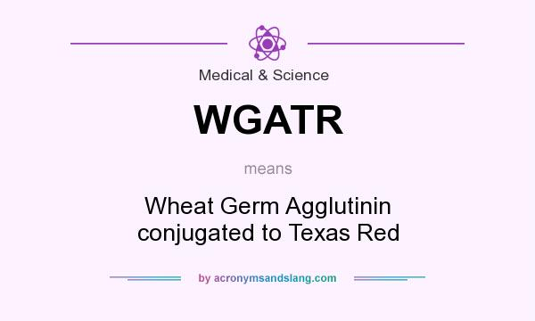 What does WGATR mean? It stands for Wheat Germ Agglutinin conjugated to Texas Red