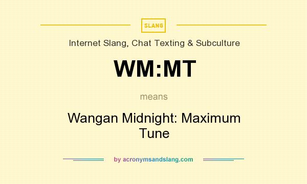 What does WM:MT mean? It stands for Wangan Midnight: Maximum Tune