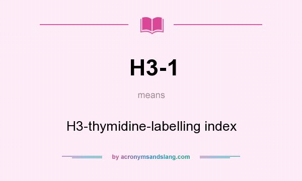 What does H3-1 mean? It stands for H3-thymidine-labelling index