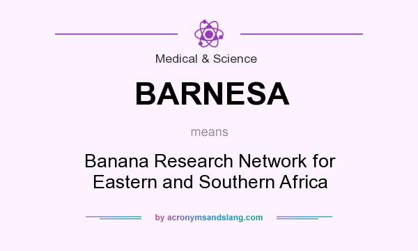 What does BARNESA mean? It stands for Banana Research Network for Eastern and Southern Africa