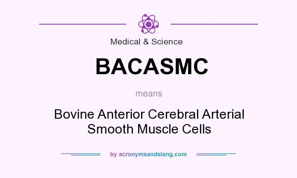 What does BACASMC mean? It stands for Bovine Anterior Cerebral Arterial Smooth Muscle Cells