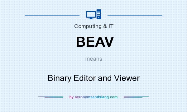 What does BEAV mean? It stands for Binary Editor and Viewer