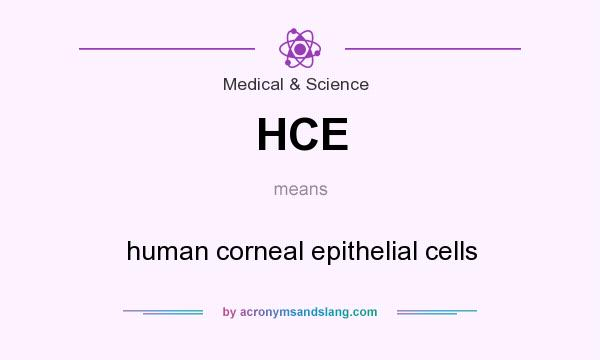 What does HCE mean? It stands for human corneal epithelial cells