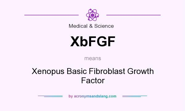 What does XbFGF mean? It stands for Xenopus Basic Fibroblast Growth Factor