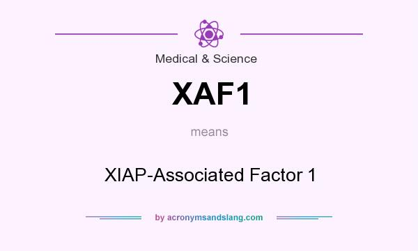 What does XAF1 mean? It stands for XIAP-Associated Factor 1