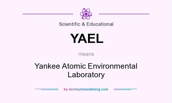 What does YAEL mean? It stands for Yankee Atomic Environmental Laboratory