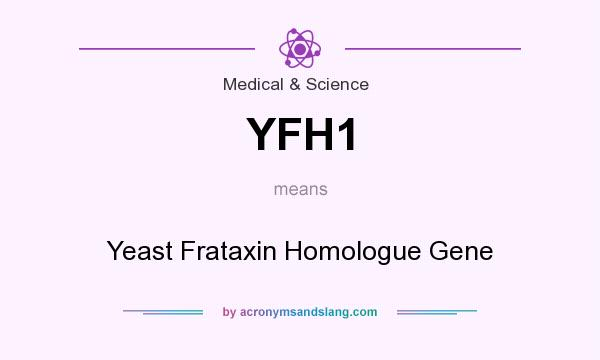 What does YFH1 mean? It stands for Yeast Frataxin Homologue Gene