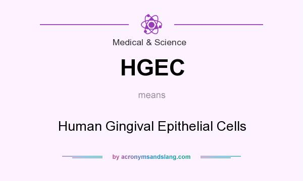 What does HGEC mean? It stands for Human Gingival Epithelial Cells
