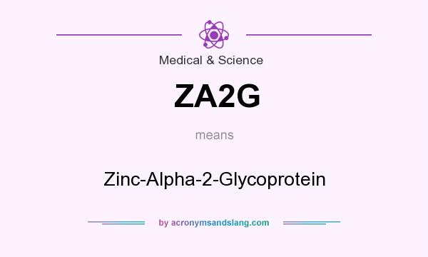 What does ZA2G mean? It stands for Zinc-Alpha-2-Glycoprotein