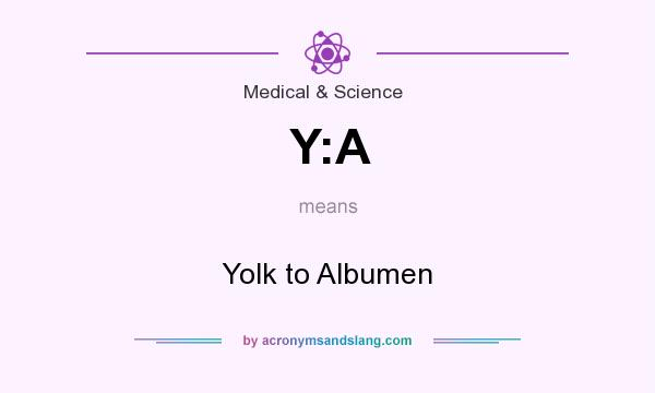 What does Y:A mean? It stands for Yolk to Albumen