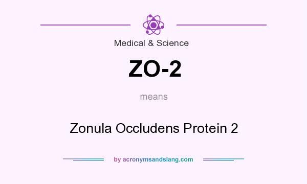 What does ZO-2 mean? It stands for Zonula Occludens Protein 2