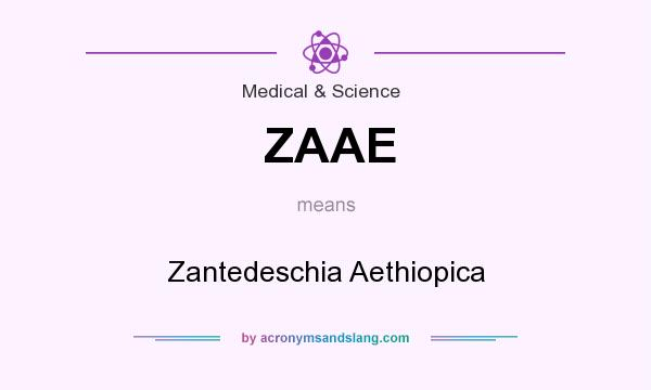 What does ZAAE mean? It stands for Zantedeschia Aethiopica