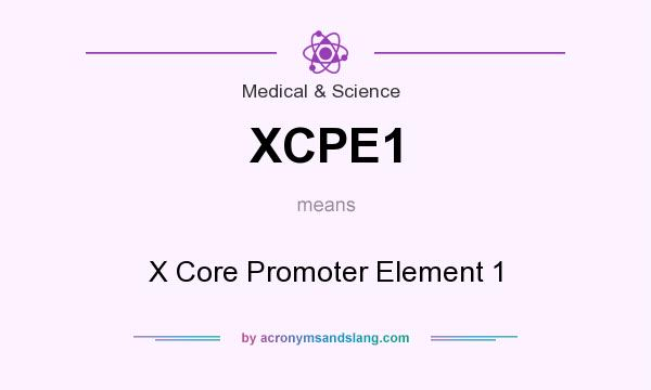 What does XCPE1 mean? It stands for X Core Promoter Element 1