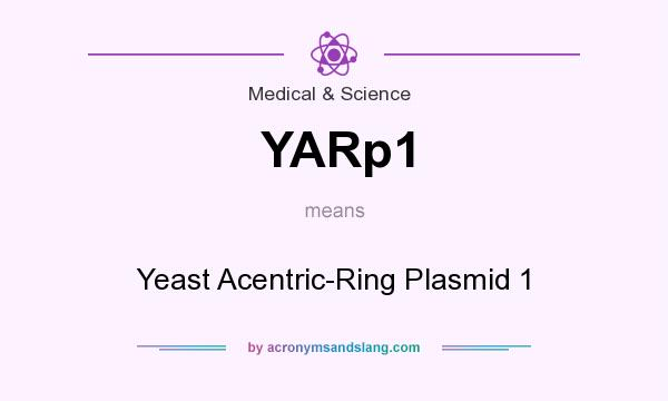 What does YARp1 mean? It stands for Yeast Acentric-Ring Plasmid 1