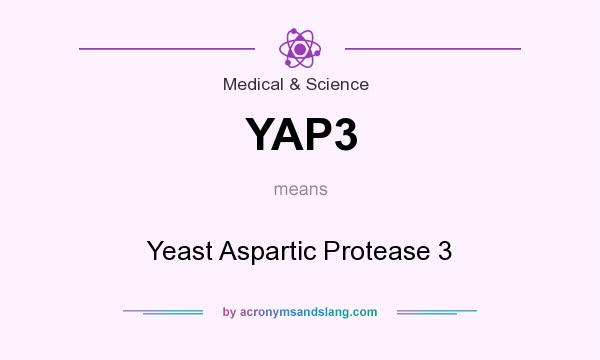 What does YAP3 mean? It stands for Yeast Aspartic Protease 3