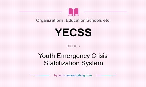 What does YECSS mean? It stands for Youth Emergency Crisis Stabilization System