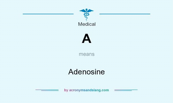 What does A mean? It stands for Adenosine