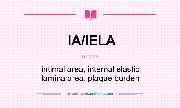 What does IA/IELA mean? It stands for intimal area, internal elastic lamina area, plaque burden