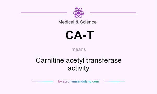 What does CA-T mean? It stands for Carnitine acetyl transferase activity