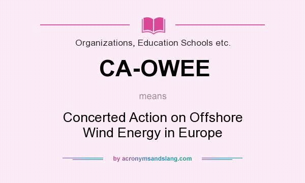 What does CA-OWEE mean? It stands for Concerted Action on Offshore Wind Energy in Europe