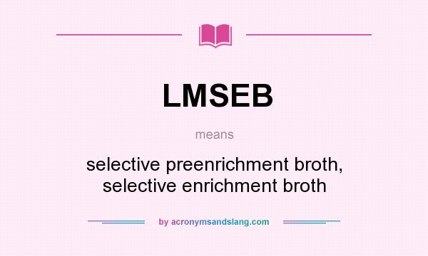 What does LMSEB mean? It stands for selective preenrichment broth, selective enrichment broth