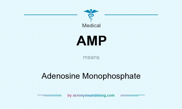 What does AMP mean? It stands for Adenosine Monophosphate