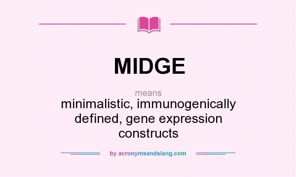 What does MIDGE mean? It stands for minimalistic, immunogenically defined, gene expression constructs